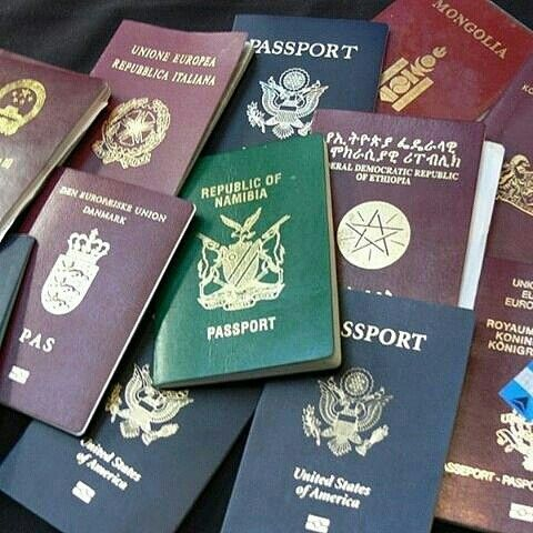 buy real and fake passport online 1